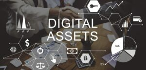 Portfolio Diversification: The Contribution of Digital Assets